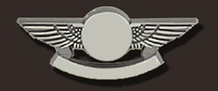 blank pilot wings pins