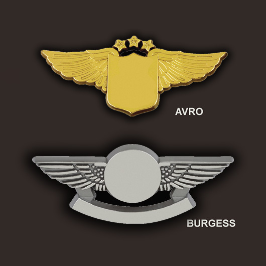 bulk plastic pilot wings pins