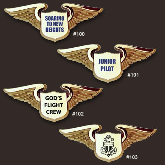 plastic pilot wings pins